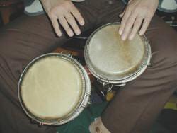bongoe